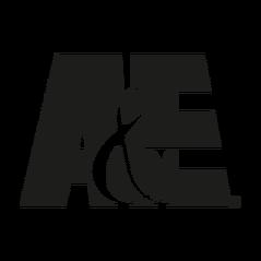 A-E 1992