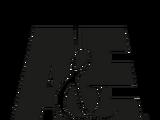 A&E (El Kadsre)