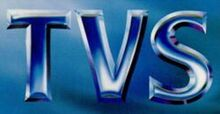 250px-Tvs1990s
