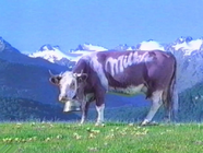 Milkaek1991