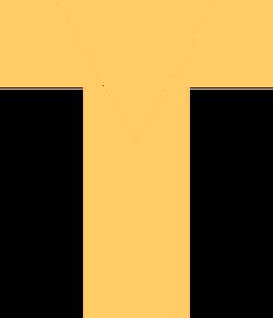 TBS logo 2013