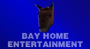 Bayhe2020