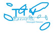 TTV 2009