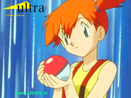 Ultra Pokeball Ident 1999