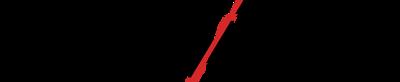 Sintech 2018 logo
