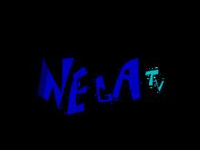 Nega TV (2020-Present)