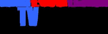 El TV Kadsre Television Network Logo 1983