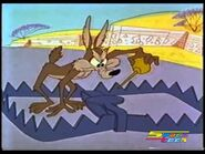 Road-Runner-Wile-E.-Coyote-cartoon-collection-Zoom-at-the-Top
