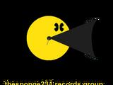 TheSponge231 Records Group