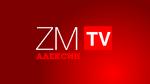ZMTVA ID 2016 2 WS