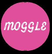 Moggle 2020