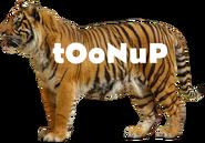 ToonUp 2004 7
