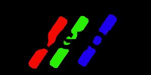 IIHQ.global 2000