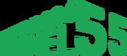 TheCuben2006 Channel 55 Years logo