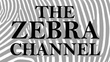 ZEBRACHAN1981