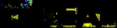 CN Real Logo