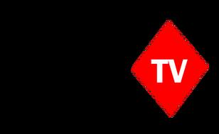 JerramyTV 2014-present