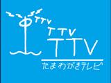 Tamawagaki Television/Other