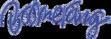 Boomerang TM Logo 2012-0