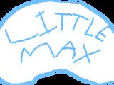 Little Max's Adventures