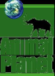 Animal Planet logo (1996-2008)