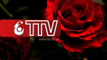 TTV ident 2010 RedRoses