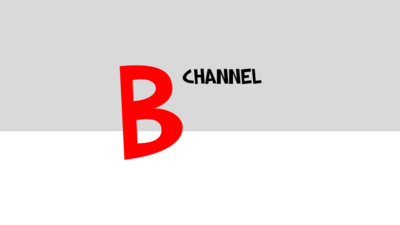 B Channel 2015 primary