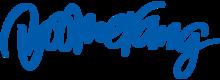 Boomerang-Logo-0