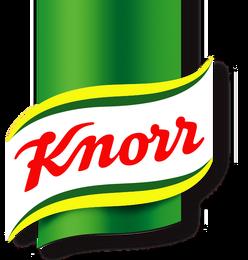 Knorr 2004