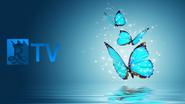 RTV ident 2010 butterfly