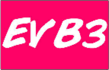 EVB3 Logo 2011