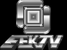 EEKTV4