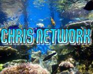 ChrisNetworkFishIdent2014