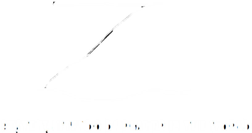 Beastest Nintendo DS Player In The World (2010-) 2