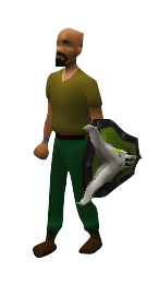Dragonfire Ward Equipped