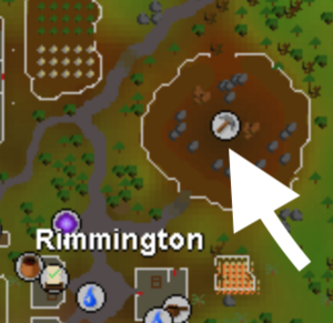 Remmington World Boss