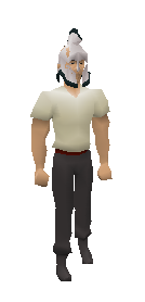3rd Age Full Helm Equiped