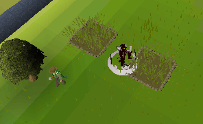 Farmingp patch