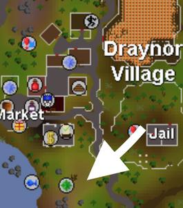 Draynor World Boss