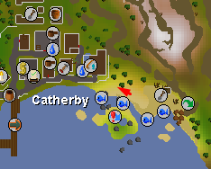 Catherby World Boss - Map - Dreamscape