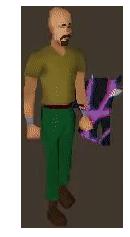 Purple Mist Spirit Shield
