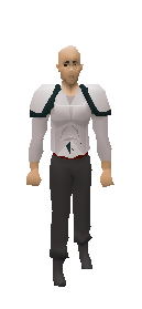 3rd Age Platebody Equiped