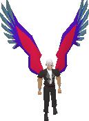Shasta Wings2