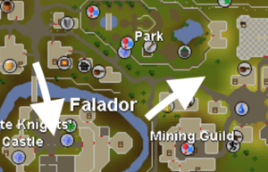 Falador World Boss