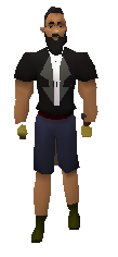Infernal Gloves Equipped