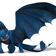 Night fury dreamworks dragons wiki fandom powered by wikia - Dragon fury nocturne ...
