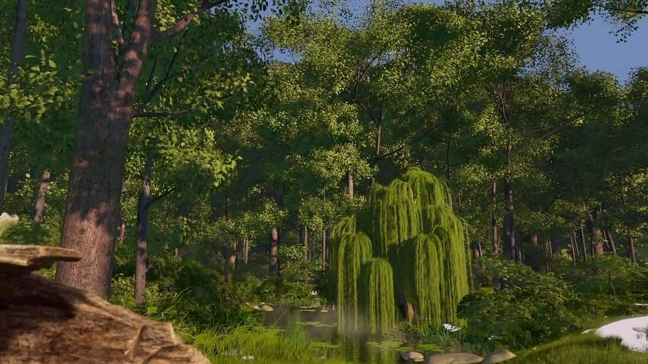 The forest (Over the Hedge)   DreamWorks Fulms Wiki   Fandom