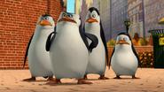 Penguins tv series