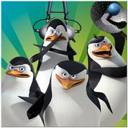 Penguins promotional photo