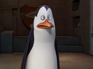 Kowalski-Staring-Intently-At-Something-XD-penguins-of-madagascar-23256440-500-374